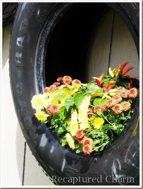 fall tires 013a