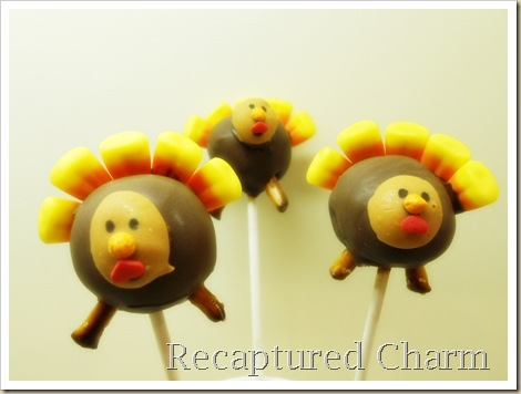 turkey pops 003a