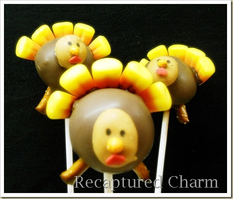turkey pops 008a