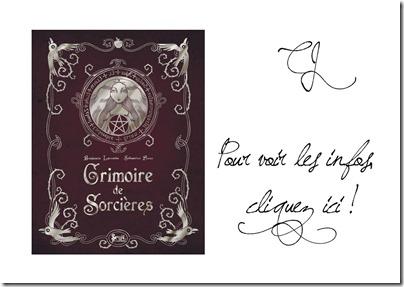 Logo-Grimoire-de-Sorcières