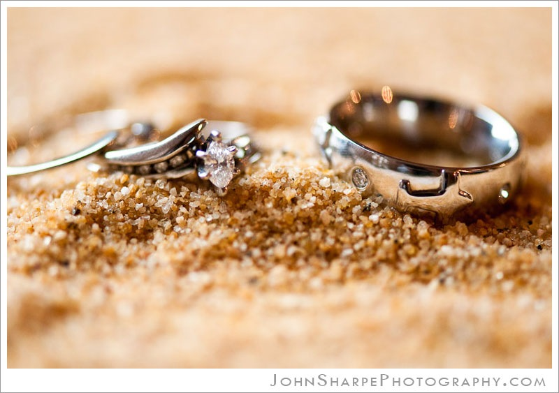 Germanic American Institute MN Wedding Ceremony Photography