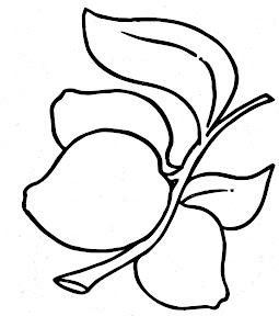 image0-27.jpg