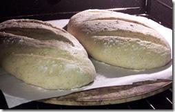 rustic-bread 029
