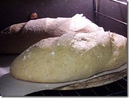 rustic-bread 031