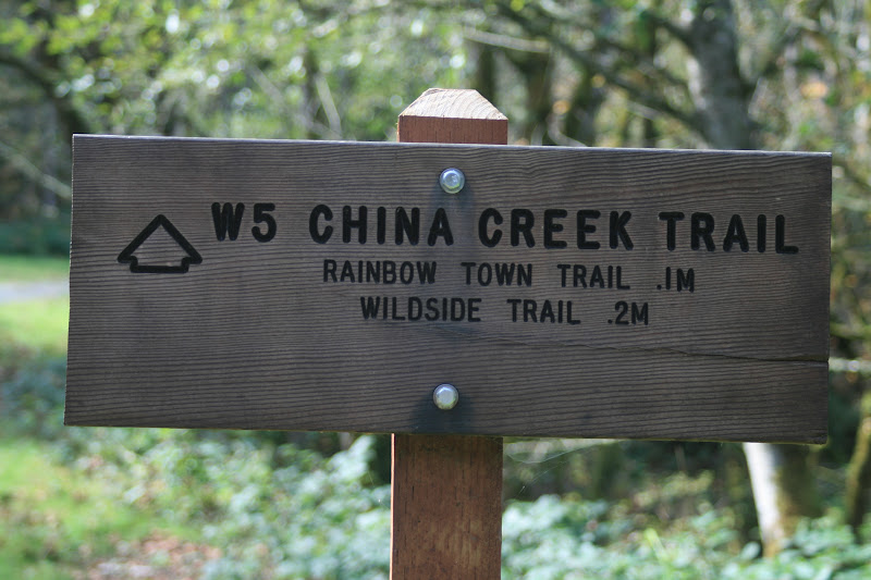 China Creek Trail