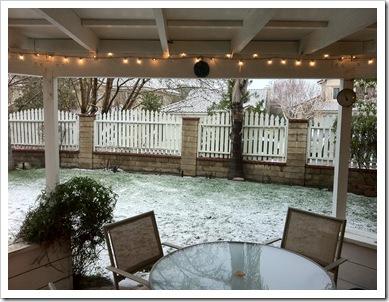 snow 048