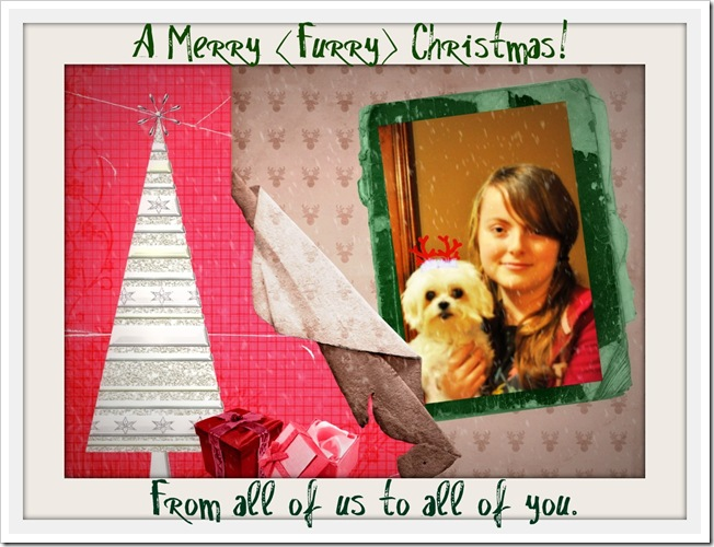 christmas collage2