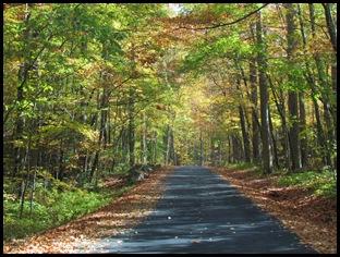 Driving along Roaring Fork