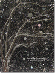 SNOW! 056 copy