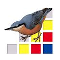 Aves de Europa icon