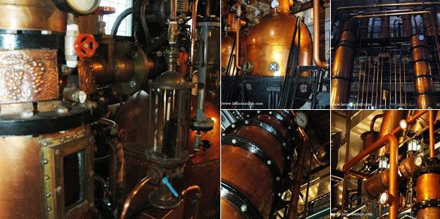 Visualizza prime uve dettagli distilleria