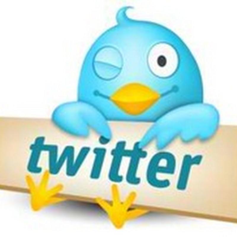 10 Strange Twitter Accounts You Should Follow