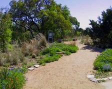 TX LBJ WFC Trail