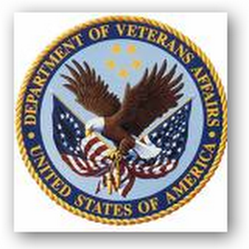VA Halts 45 I.T. Projects and Will Be Required to Use Business Intelligence by Next Year