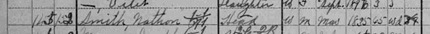 Census for Nathan Smith 1900