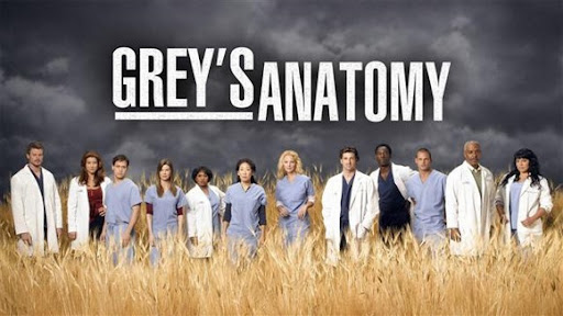 Download Grey's Anatomy dublado legenda 6 Temporada
