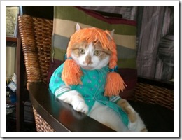 cat_dressed_as_pippi_longstocking