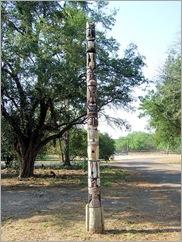 Estero Llano Grande Sp71