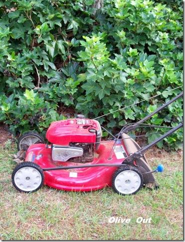 gardening june2010 007