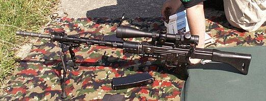 FASS 57 custom sniper .....etc... Vugelles1000m_35