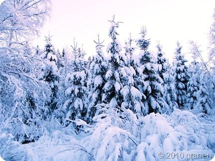Snö & köld