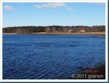 Kortjärvi