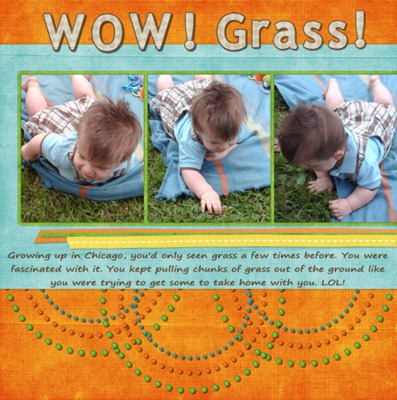 Grass_500_150