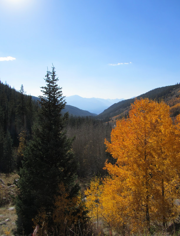 fall colors on weston pass in colorado