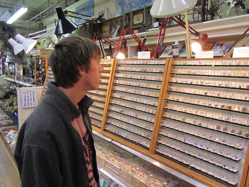 jack looking at mineral specimines at the Rock Shop in Leadville