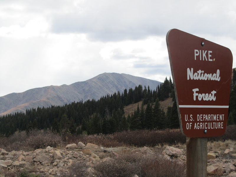 pike national forest sign