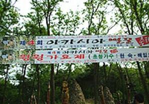 Acacia Honey Festival 01