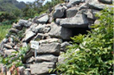 Ulleung Namseori Tumulus