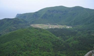 Ulleung Nari Valley