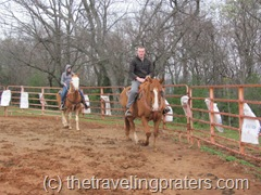 riding horses in the pen