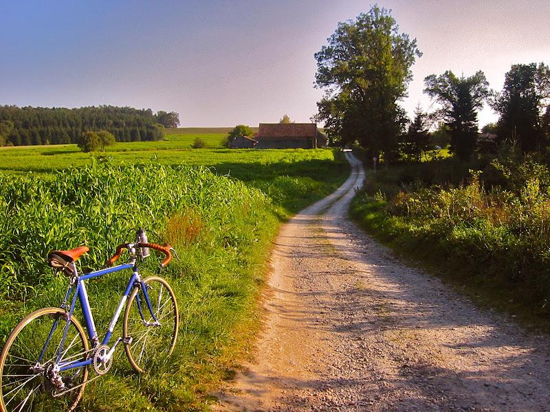 Ziller´s Räderfred] The Matter Of Time [Archiv] - Bikeboard