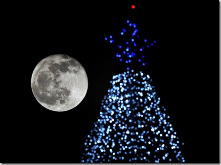 Full Moon Christmas Tree