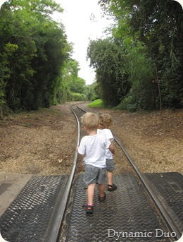 rals pulling gus down the tracks..
