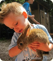 gus holds the rabbit