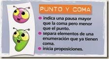 punto_y_coma
