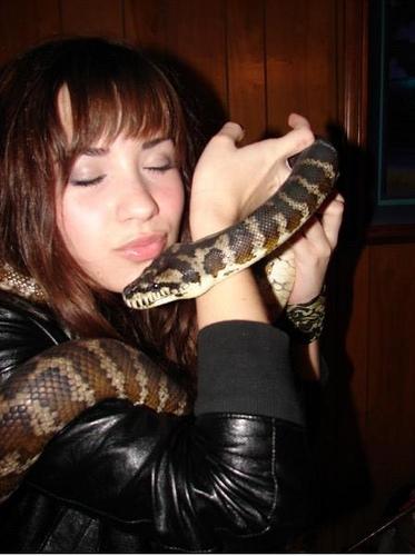 A Demi le gustan las Serpientes!! Demilovato