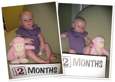 View 2 months