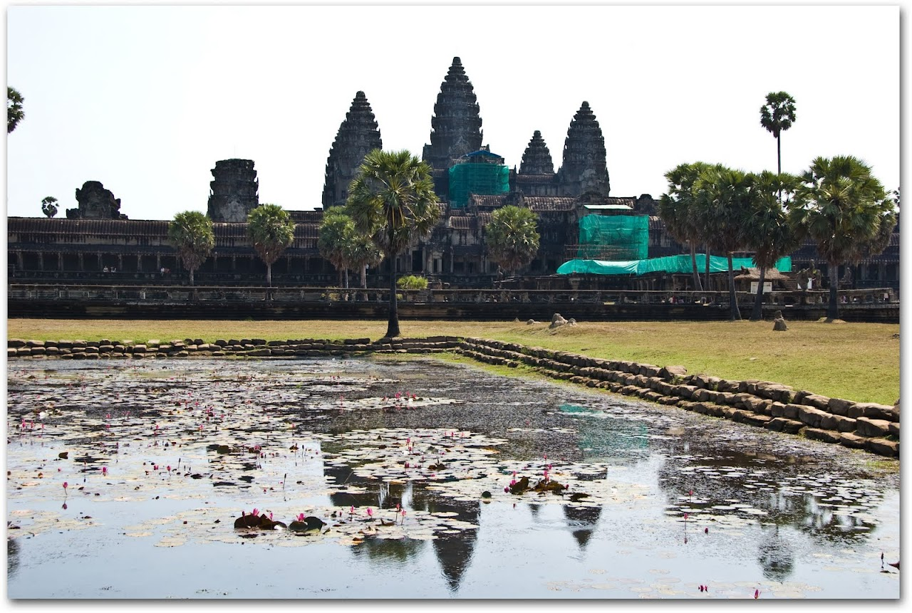 Angkor and lotus petals