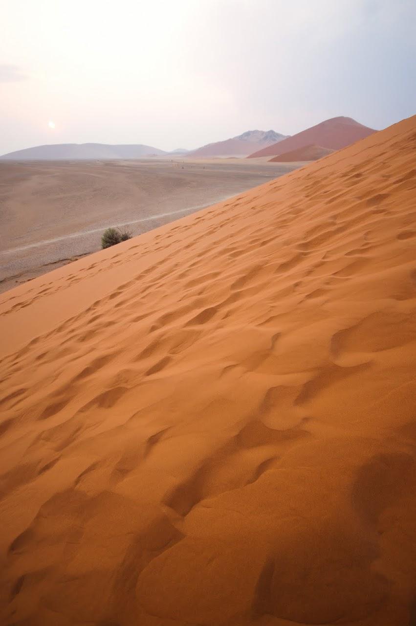 Dunes Namib desert