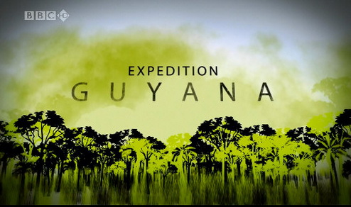 Wyprawa Do Gujany / Expedition Guyana (2008) PL.TVRip.XviD / Lektor PL