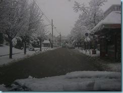 2009 01 03 Νάουσα Χιονόπτωση_001