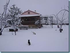 2009 01 03 Νάουσα Χιονόπτωση_010