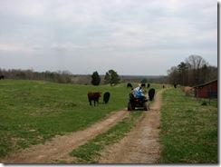 Alabama2009 089