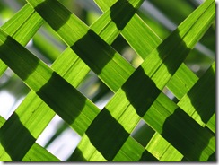 coconut weave