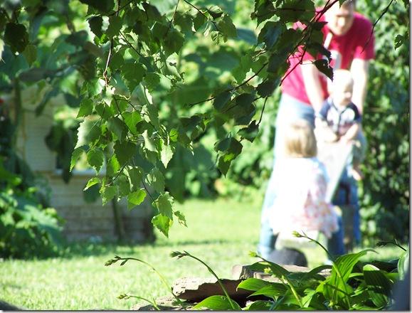 Robinson Photos Aug 13 008