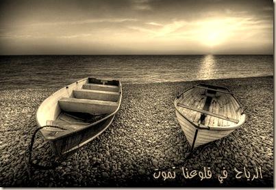 محمد الشلطامي